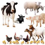 28 Farm Animals