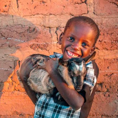Child holding goat